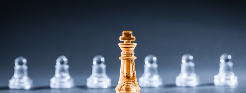 Leader in the contact centre - chess
